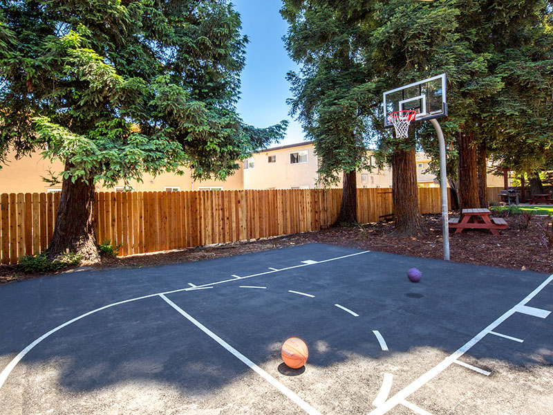 Greenleaf Apartments Basketball Court and Outdoor Area | Valiance Capital